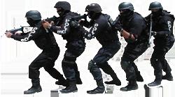 SWAT Taeam