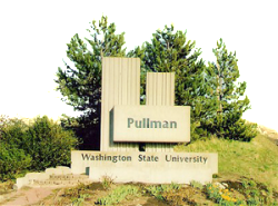 Washington_State_University