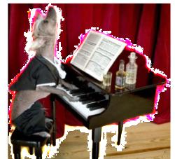 dog-piano