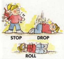 stop-drop-roll-sized